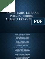 Comentariu literar (Popov Denis)