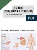 Tecidos Epitelial e Conjuntivo