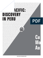 Inca Pacific 2002 Annual Report – Cu Mo Au