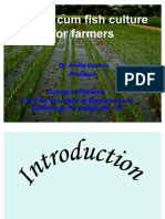 Paddy Cum Fish Culture for Farmers By
