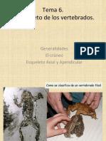 6 PVyHumana Cefalico 1