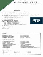 Cap.11; Teorías Integradoras