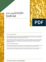 Recuperação Judicial - treinamento basico