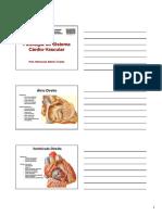 Patologia Cardiaca 01