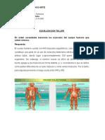 actividad 3 -actividad fisica- aprendiz_diva marcela polanco ortiz_ficha_2206337_cultura fisica_programa regente farmacia_intructora_Ana Maria Liz