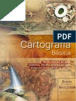 LIVRO_ CARTOGRAFIA_ BASICA_2020_UFRGS