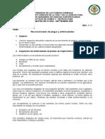 UNIVERSIDAD DE LAS FUERZAS ARMADA2