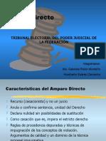 AmparoDirectoTRIFE
