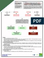 Fluxo coronavírus 16-03-2020.pdf