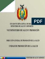 TallerElaboracionEstrategia-Bolivia-2011-Ministerio-SAFSI