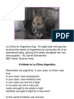 tribute to la china argentina dog