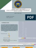 Tasna Paola- Presentación en Power Pont del libro de CCNN_compressed (1)