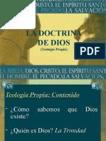 TEOLOGIA PROPIA-BUENO SI-ORIGINAL