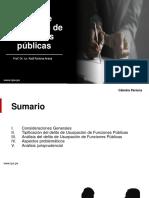 DP IV 2020 - TEMA 7. Usurpación de Funciones