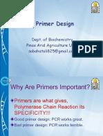 primerdesign-190207162122