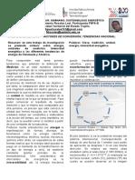 Art.unidades Medidas Conversion Energia Tendencias