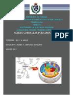 2. Modelocurricularporcompetencias 120807235009 Phpapp01 Nelly Aráuz