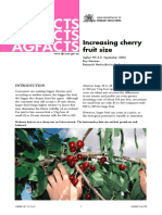 Increasing Cherry Fruit Size