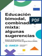 Educacin_bimodal_combinada_o_mixta