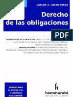 Derecho de Las Obligaciones. 2020. Carlos Calvo Costa