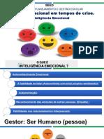 APRESENTAÇÃO 2020 inteligencia emocional atualizada