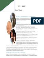 3236_Programa Salud y Pueblos Indigenas (2)