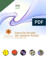 8_archivo-Flores_Desierto_Florido