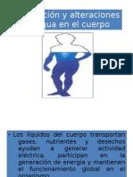 Distribución y alteraciones del agua en el cuerpo