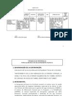 2. TDR - ELABORACION DE EXPEDIENTE- CORRALES (2) (1)