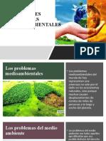 1.3 PRINCIPALES PROBLEMAS MEDIOAMBIENTALES