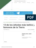 Arboles Bellos