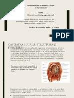 structura mucoasei Leucoplazia