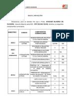 9. DECLARAÇÃO Disciplinas Graduação