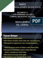 organisasi-data