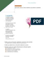 enc12_opcoes_ficha_40_luiza_neto_jorge_magnolia
