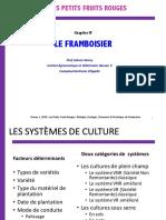 Chapitre IV - Le Framboisier (1)