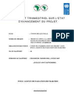 UNDP-CG-RAPPORT__TRIMESTRIELS_III_NOUVEAU
