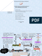 PSICOPATOLOGIA ORGANIZADOR 2