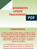 CARBOHIDRATOS LIPIDOS Y TRIGLICERIDOS