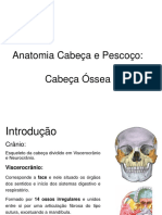 Cabeça Óssea 2021