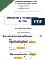 Transcricao e processamento do RNA