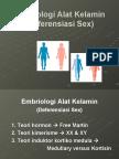 Embriologi Phiet