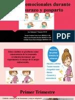 Cambios Emocionales en El Embarazo y Post