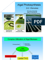 Algal Photosynthesis_dismukes