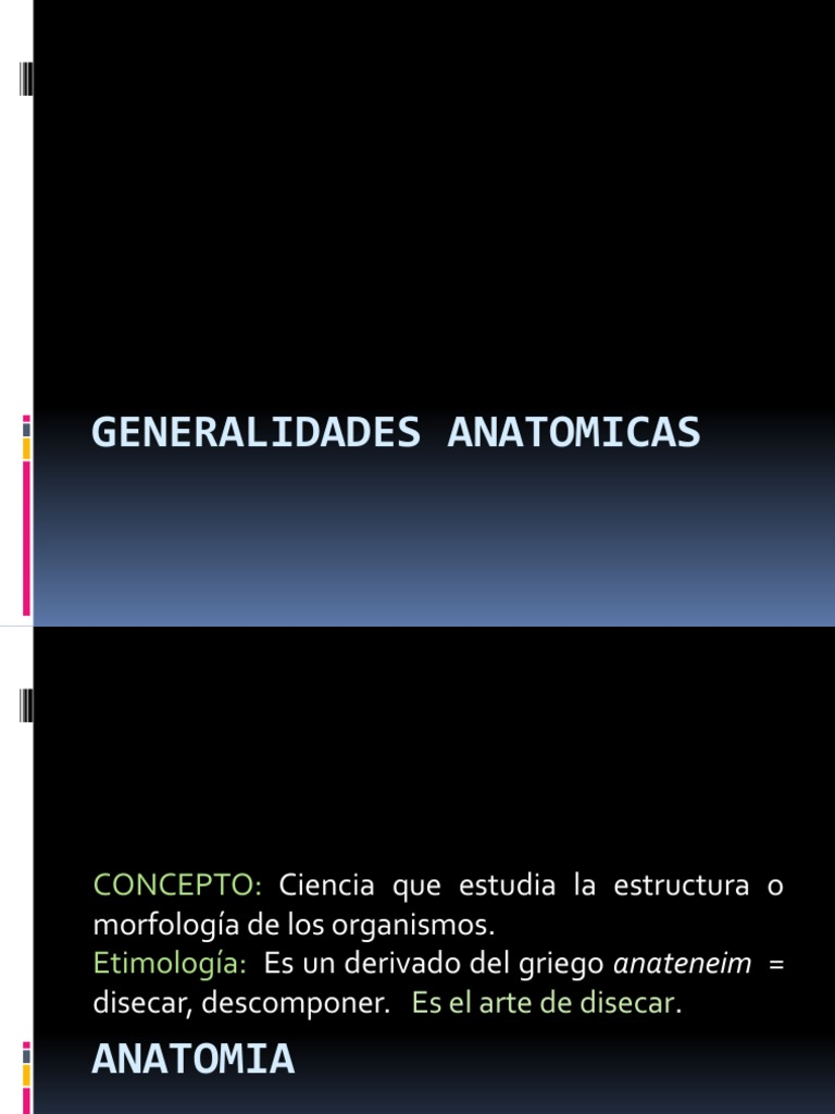 CLASE I ANATOMIA GENERALIDADES. (1)