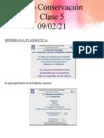 Clase 5_ Membra, cromatografía, crioprotectores