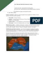 Tema 10 Diferențe Dialectale (Teritoriale, Sociale)