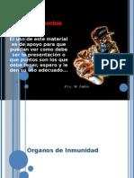 Organos de inmunidad
