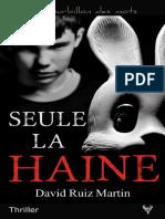 EXTRAIT du roman « Seule la haine » de David Ruiz Martin