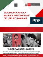 Violencia Mujer y Familiar y Sexual